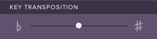 Screenshot of transposition slider